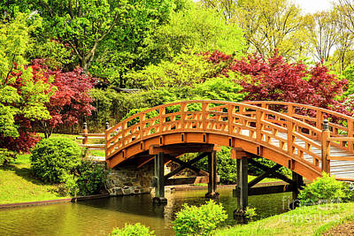 Photograph - Japanese Garden Bridge by Ben Graham