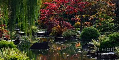 Photograph - Japanese Garden Dream by Lisa L Silva