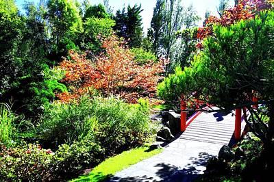 Photograph - Japanese Garden In Hobart by Kirsten Giving