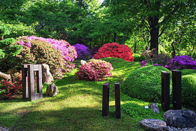 Photograph - Japanese Garden In Spring 1. Prague by Jenny Rainbow