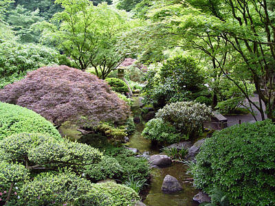 Photograph - Japanese Garden by Loretta Luglio
