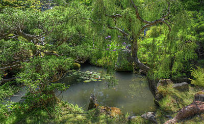 Photograph - Japanese Garden by Michael Kirk