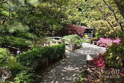 Garden Photograph - Japanese Garden Path With Azaleas by Carol Groenen
