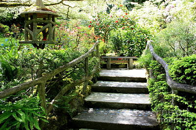 Photograph - Japanese Garden Steps by Carol Groenen