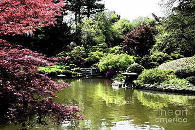 Photograph - Japanese Garden by Tom Wurl