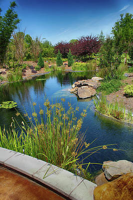 Photograph - Japanese Garden View 53 by Carlos Diaz
