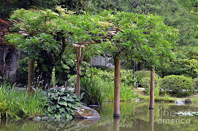 Photograph - Japanese Gardens 4 by Carol Eliassen