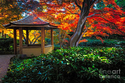 Fall Foliage Photograph - Japanese Gardens by Inge Johnsson