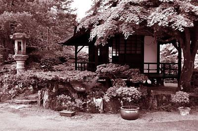 Photograph - Japanese Gardens Of County Kildare by Richard Ortolano