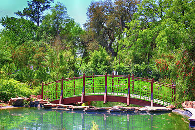 Photograph - Japanese Gardens View 51 by Carlos Diaz