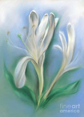 Pastel - Japanese Honeysuckle Flowers by MM Anderson