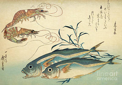 Painting - Japanese Horse Mackerel And Japanese Tiger Prawn by Hiroshige