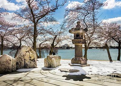 Photograph - Japanese Lantern At The Tidal Basin by Karen Jorstad