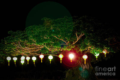 Japanese Lantern Tree Art Print