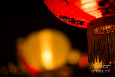 Photograph - Japanese Lanterns 2 by Steven Hendricks