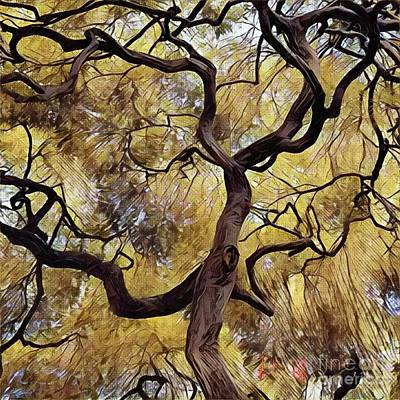 Photograph - Japanese Maple  by Jodie Marie Anne Richardson Traugott          aka jm-ART