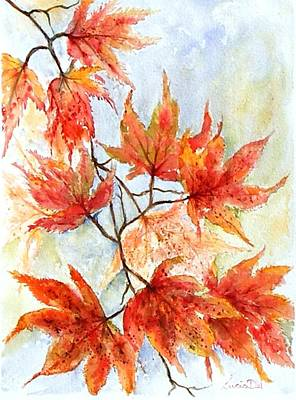 Watercolour Painting - Japanese Maple by Lucia Del
