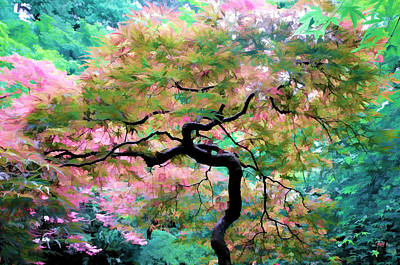 Photograph - Japanese Maple Tree Painting by Athena Mckinzie