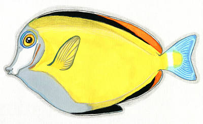 Surgeonfish Painting - Japanese Surgeonfish by Feami HuX