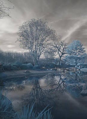 Art Print featuring the photograph Japanese Tea Garden Infrared Left by Joshua House