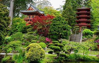 Tea Tree Flower Photograph - Japanese Tea Garden - San Francisco by L O C