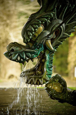 Dragon Photograph - Japanese Water Dragon by Sebastian Musial