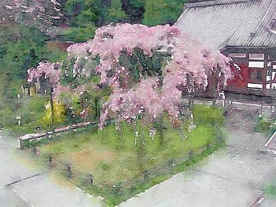 Digital Art - Japanese Weeping Cherry Tree by Susan Maxwell Schmidt