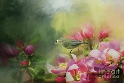 Japanese White-eye On A Blooming Tree Art Print