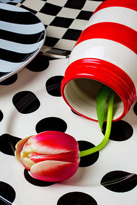 Jar With Tulip On Plates Print by Garry Gay