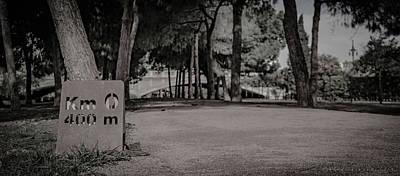 Photograph - Jardi Del Turia Valencia by Henri Irizarri