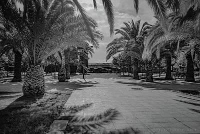 Photograph - Jardi Del Turia Valencia Spain by Henri Irizarri