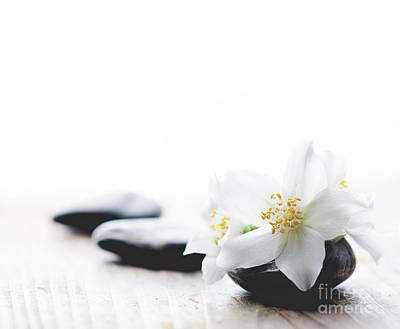 Jasmine Flower On Spa Stones Art Print