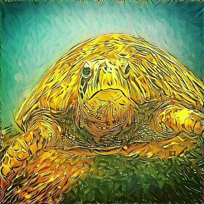 Digital Art - Jasmine The Turtle by Erika Swartzkopf