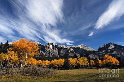 Photograph - Jasper - Autumn Scenic by Terry Elniski