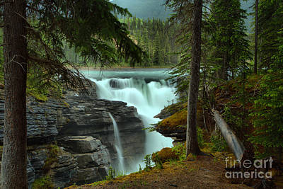 Photograph - Jasper Glacier Falls Through The Trees by Adam Jewell