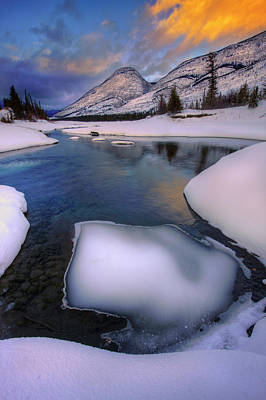 Photograph - Jasper In The Winter by Dan Jurak