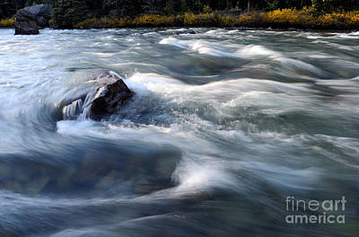 Photograph - Jasper - Maligne River by Terry Elniski