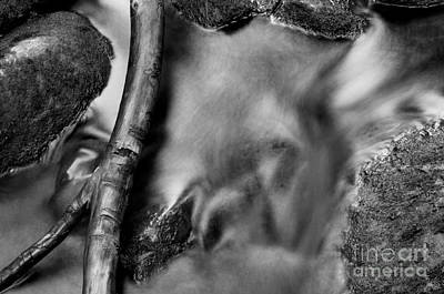 Photograph - Jasper - Monochrome Mountain Stream by Terry Elniski