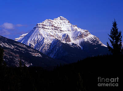 Photograph - Jasper - Mount Kerkeslin by Terry Elniski