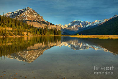 Photograph - Jasper Mt. Chephren Reflections by Adam Jewell
