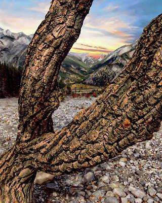 Photograph - Jasper National Park by Anthony Dezenzio