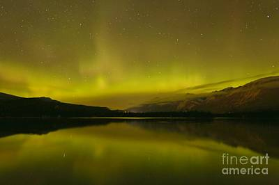 Photograph - Jasper National Park Aurora Borealis by Adam Jewell