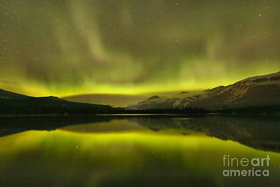 Photograph - Jasper Night Skies by Adam Jewell