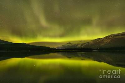 Photograph - Jasper Night Skies by Adam Jewell