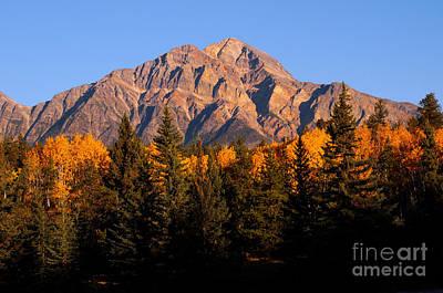 Jasper - Pyramid Mountain Autumn Season Art Print by Terry Elniski