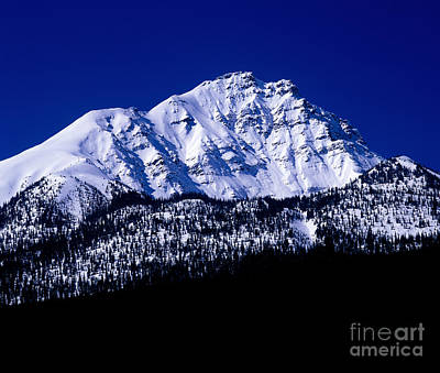 Photograph - Jasper - Rocky Mountain Scenic by Terry Elniski