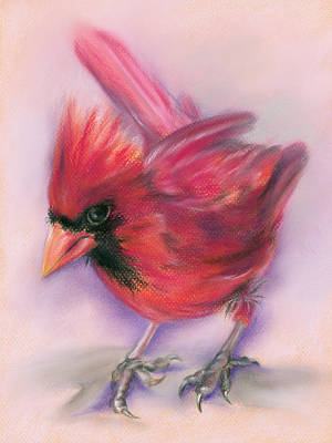 Pastel - Jaunty Redbird Cardinal by MM Anderson