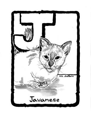 Wall Art - Painting - Javanese Cat Drawing by Kim Guthrie