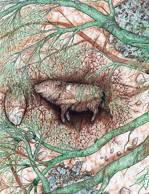 Dried Drawing - Javelina Shade by Theresa Higby