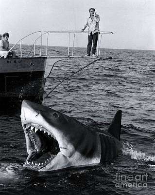 1975 Photograph - Jaws - 1975 by The Titanic Project